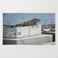 iggy Area & Throw Rugs featuring IGGY the Iguana  by Cemetery Prints Inc.