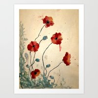 poppies Art Prints featuring Poppies by Megan Hunter