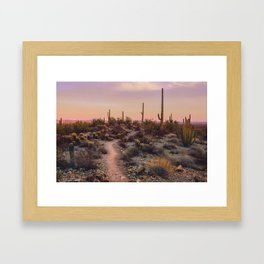 Sonoran Sunset Framed Art Print