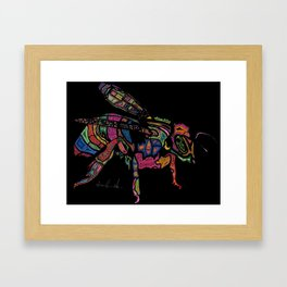 Baxter Honeybee Framed Art Print