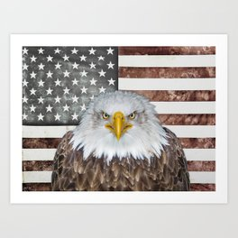 American Bald Eagle Patriot Art Print