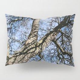 WINTER PEAR TREE Pillow Sham