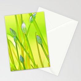 Allium 144 Stationery Cards