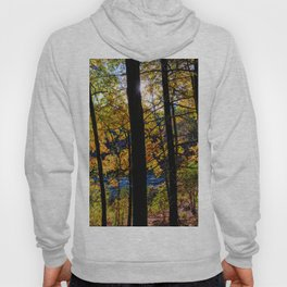 Walden Pond Autumn Forest  in Concord Massachusetts Hoody