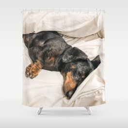 Dog by Jessica Johnston Shower Curtain