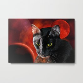 Black Cat and Planet Metal Print