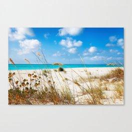 Half Moon Bay dunes, Turks & Caicos Canvas Print