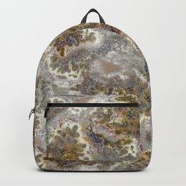 ¡Mire de la Cholla! Backpack
