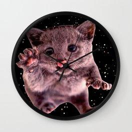 Kitten. In. Spaaace. Wall Clock