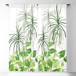 Tropical Plants Blackout Curtain