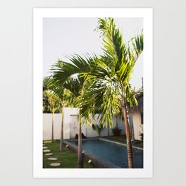 Bali Palm Art Print