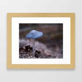 Blue Cap Framed Art Print