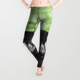 Mating Swallowtail Butterfly Leggings