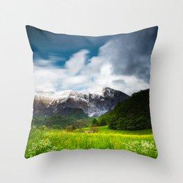 Spring flower field under mountain Krn Throw Pillow