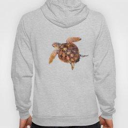 Loggerhead turtle Hoody