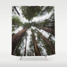 Redwood Portal - nature photography Shower Curtain