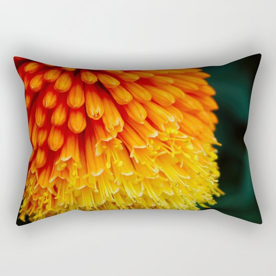 Kniphofia Rooperi Rectangular Pillow