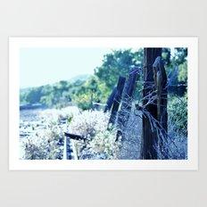 Fence Cool Blue Art Print