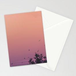 Volando Stationery Cards