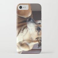 copper iPhone & iPod Cases featuring Copper by Irène Sneddon