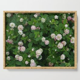 Clover flowers green and white floral field Serving Tray