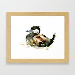 Ruddy Duck, duck children illustration, cute duck artwork Framed Art Print