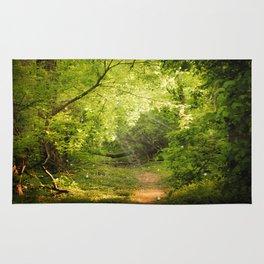 The Secret Path Rug