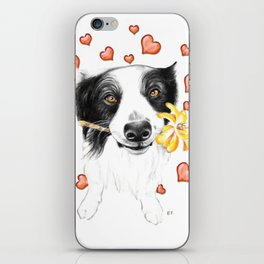 Border Collie And Hearts iPhone Skin