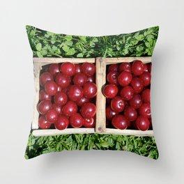 Prunus cerasus sour cherry fruit Throw Pillow