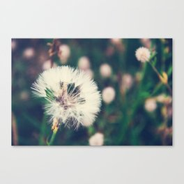 Lazy Summer Canvas Print