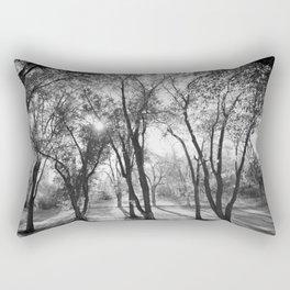 Into The Shadows Rectangular Pillow