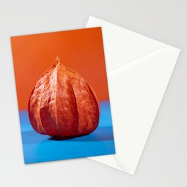 Dried box from the fruit of physalis Stationery Cards