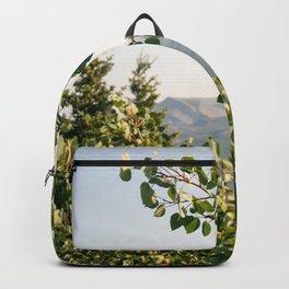 Aspen Leaves Backpack