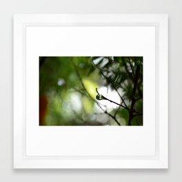 Autumn Drop 2 Framed Art Print