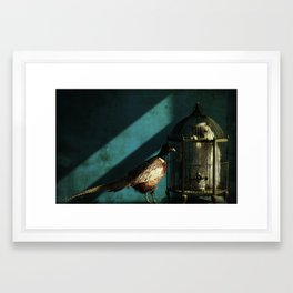 Clever Bird Framed Art Print