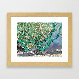 Costa Brava Framed Art Print
