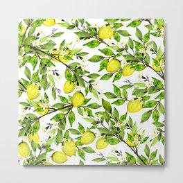 The Lemon Orchard on White Metal Print