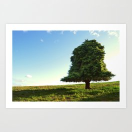 the perfect tree Art Print
