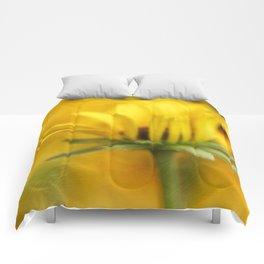 Summer Warmth Comforters
