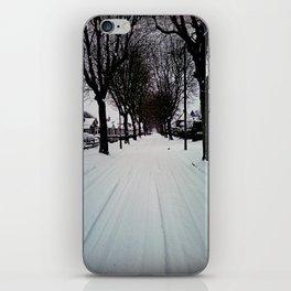 Urban Winter iPhone Skin
