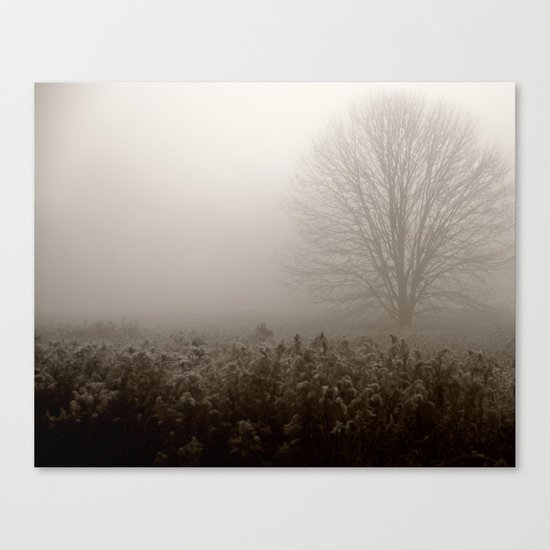Falls first frost Canvas Print