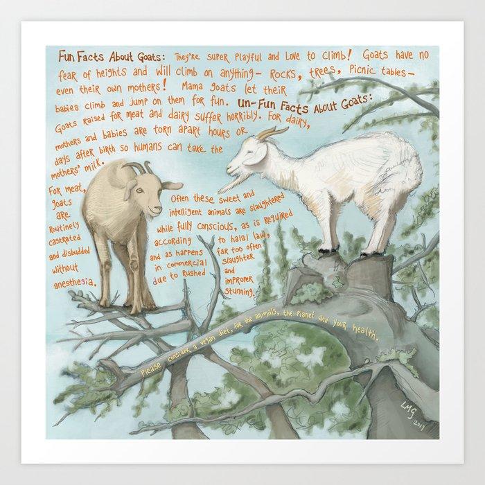 Goats 1 Art Print