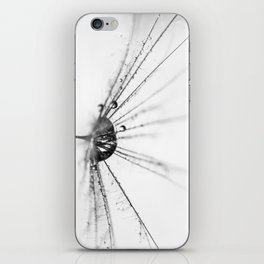 Abstract Beauty a wet Dandelion Seed iPhone Skin