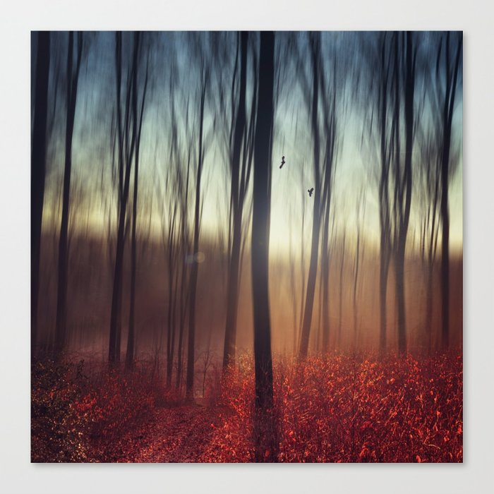 Crying Lights Canvas Print