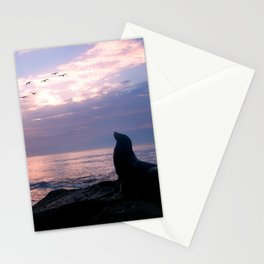 La Jolla Sea Lion Stationery Cards