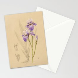 Iris germanica Stationery Cards