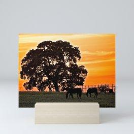 retreat at sunset Mini Art Print