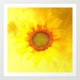 sunflower yellow decor Art Print