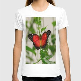 Red Lacewing Butterfly T-shirt