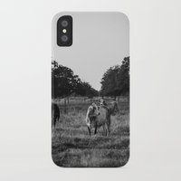 cows iPhone & iPod Cases featuring Cows by No Title Photography by April